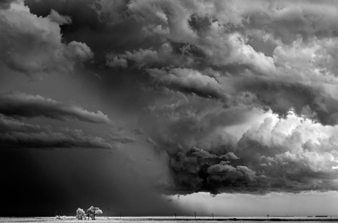 Mitch Dobrowner_Trees-Clouds