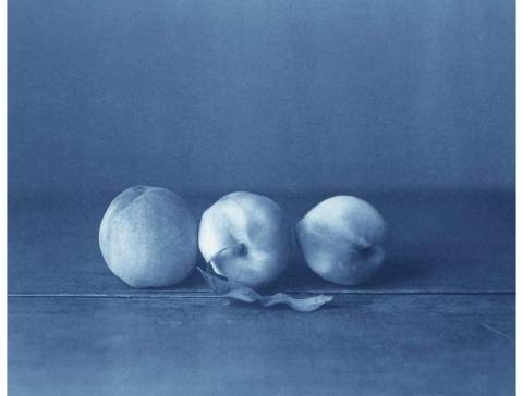 Three-White-Peaches